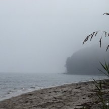 Foggy beach - Moesgard.